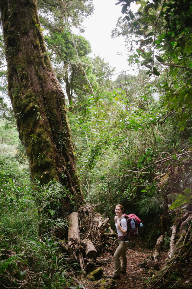 A woman backpacking in a tropical cloud forest